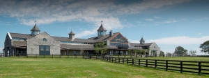 Providence Hill Farm - Equestrian Program - Mississippi