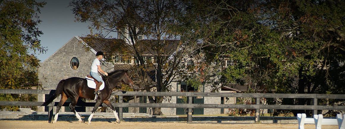 PHF-slide-equestrian9