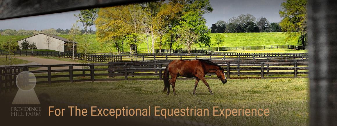 slide-equestrian