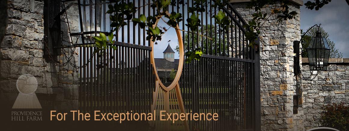 slide-experience